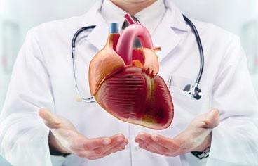 Varisli Damar Kalp Ameliyatında Kullanılır mı?